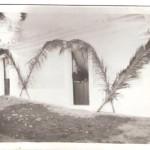 Festa S João ruas enfeitadas com folhas de palmeira e no chão folhas e pétalas para passar a procissão