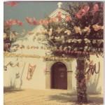 igreja Festas Flores